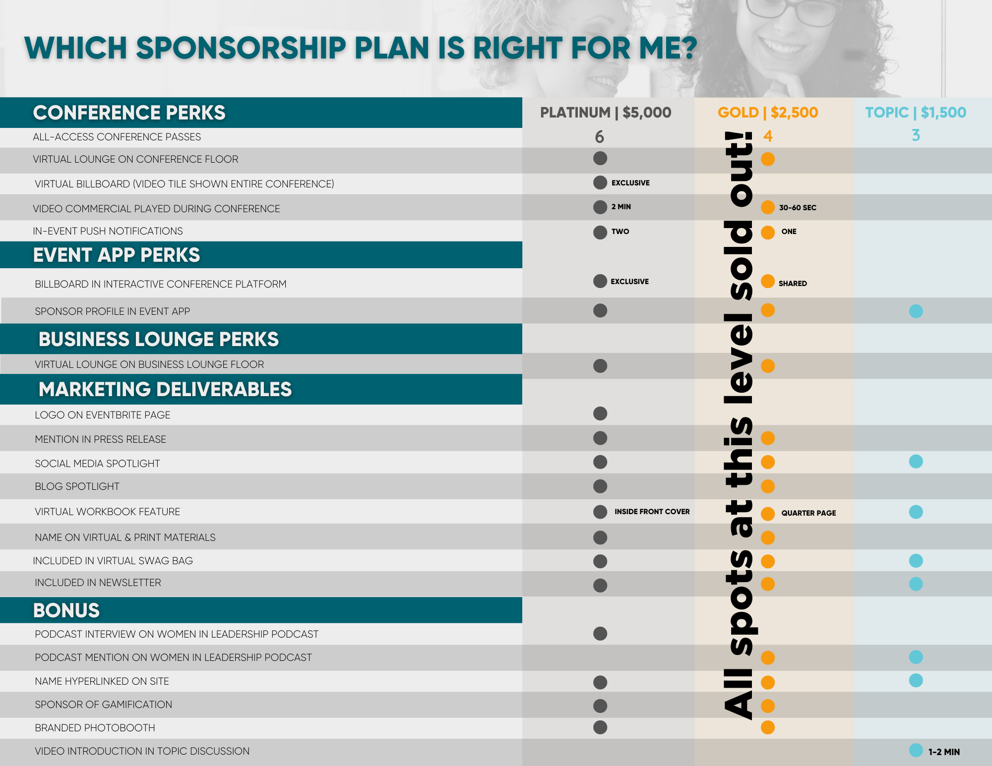 2020 Sponsor Options